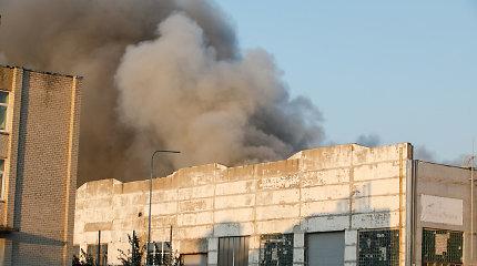 Vyriausybė: gaisro Alytuje nuostoliams ir išlaidoms – 1,14 mln. eurų