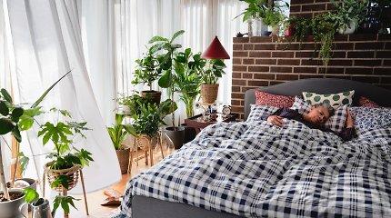 Lietuvos žmonės miega: ar atsakysite į 15 klausimų apie miegą teisingai?