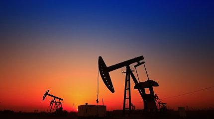IEA: naftos paklausa 2022 metais viršys iki pandemijos buvusį lygį