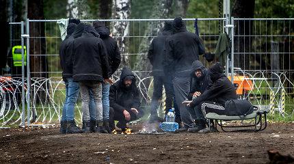 Į Lietuvą patekęs migrantas bus teisiamas už vaikų pornografiją