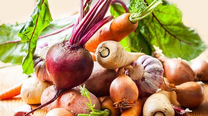 V.Kurpienė – apie šakninių daržovių naudą, kokios užkerta kelią tam tikroms ligoms ir kaip ilgiau išlaikyti gėrybes nesuvytusias?