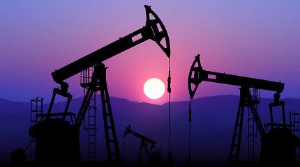 "Rusiška ""Urals"" nafta 2019 metais buvo beveik dešimtadaliu pigesnė"