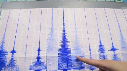 Šiaurės rytų Japoniją supurtė žemės drebėjimas, cunamio pavojus nepaskelbtas