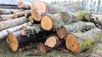 Beveik pusė medienos pirkėjų stabdo pirkimus, teigia Miškų urėdija