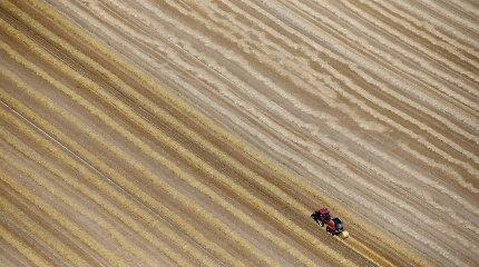 Žemės mokestis: viena įmonė mokės 117 tūkst. eurų, gyventojas – 20 tūkst.