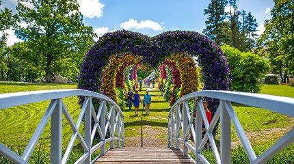 Įspūdinga kulminacija Pakruojo dvaro gėlių festivalyje – dar nematytas konkursas