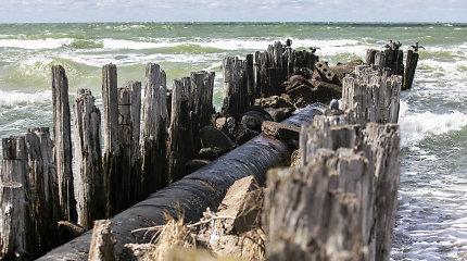 Pradėtas tyrimas dėl į Baltijos jūrą išsiliejusios Būtingės naftos