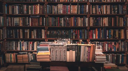 Knygų vertimo rekordas: užsienyje bus išleistos dar 46 Lietuvos autorių knygos