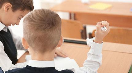LVAT: Vilniaus savivaldybės sprendimas dėl vaikų skaičiaus klasėje prieštarauja teisės aktams