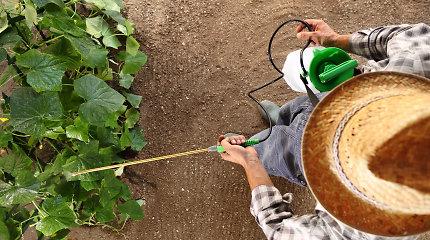Endokrininę sistemą ardančios cheminės medžiagos (ESAM): ką svarbu žinoti apie pesticidus?