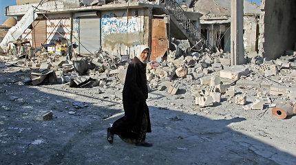 Šiaurės vakarų Sirijoje per režimo pajėgų ataką žuvo 14 civilių