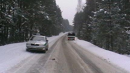 Utenos apskrities policija įspėja vairuotojus saugotis laukinių žvėrių