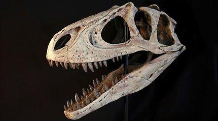 Dinozaurai nebuvo pirmieji išnykę dėl Žemės klimato pokyčių