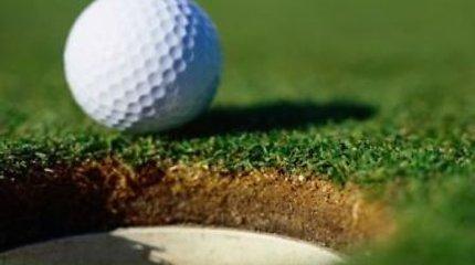 Nokautas golfo kamuoliuku įvertintas 8 milijonais