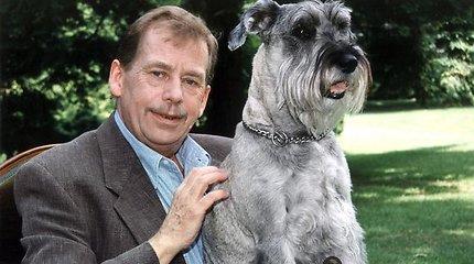 Su Vaclavu Havelu bendravęs rašytojas Almis Grybauskas: čekams jis buvo moralinis autoritetas