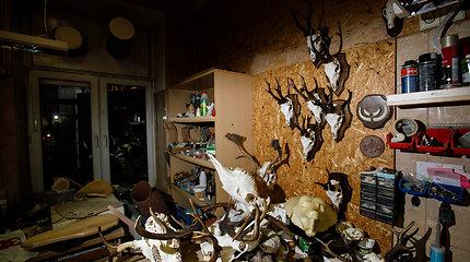 Tado Ivanausko muziejus: kur gimsta iškamšos