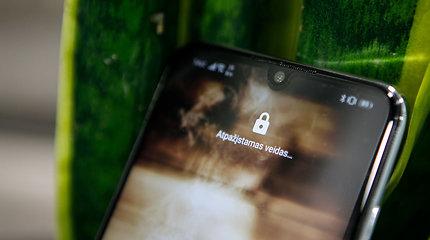 Išmaniųjų telefonų įkrovimas: greitis prieš saugumą