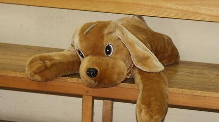 Marijampolėje maiše rastas sunkiai sužalotas šuo: teko užmigdyti ir iškelti bylą