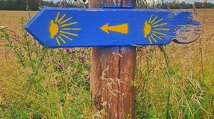 """Renaldo Asipausko žygis """"Camino Lituano"""" keliu"""
