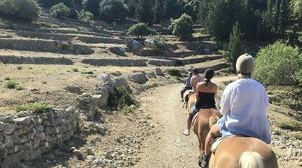 Kornelijos arklidės Kefalonijos saloje