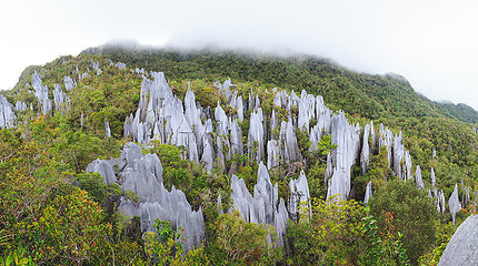 Įspūdingiausi Malaizijos nacionaliniai parkai