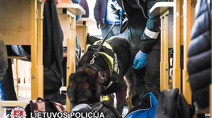 Profesinės mokyklos vadovų įtarimus patvirtino šunys: mokiniai turi ir rūkalų, ir kvaišalų