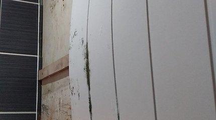 Pas kaimyną trūkus vamzdžiui, aplietas vonios kambarys