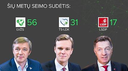 Svarbiausi 2016 metų Seimo rinkimų rezultatai