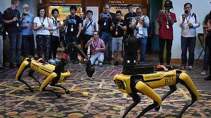 """""""Boston Dynamics"""" robotas """"Spot"""""""