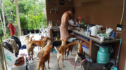 Manto ir Rasos gyvenimas Tailande su globojamais šunimis