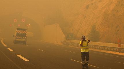 Ugniagesiai: 83 gyvybes nusinešusius gaisrus Graikijoje sukėlė padegimas