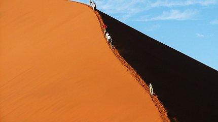 Gyvenimo kelionė į Afriką. Pirmapradė gamta ir žmonės (I dalis)