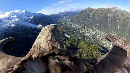 Kvapą gniaužiantys vaizdai iš erelio skrydžio atskleidžia niūrią klimato kaitos realybę