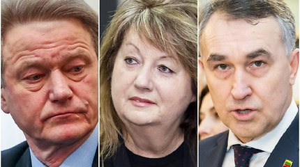 Rinkimai į EP (V): Kaip rasti geriausią parlamentarą?