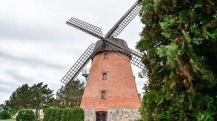 Garsusis Panevėžio vėjo malūnas – vėl susidomėjimo akiratyje