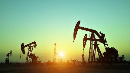 OPEC 2022 metais tikisi spartesnio naftos paklausos augimo negu iki šiol prognozuota