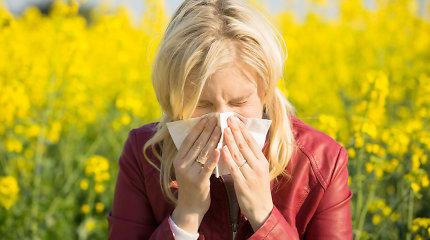 Gydytoja pataria, kaip susitvarkyti buitį, kad alergija neapkartintų gyvenimo