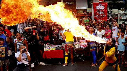 Kinų bendruomenės visame pasaulyje sutinka Kiaulės metus