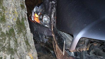 """Į sunkvežimio priekabą atsitrenkęs """"Audi"""" vairuotojas taip susinervino, kad spruko ir užsimušė?"""