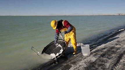 XXI amžiaus nafta: kas darosi su ličiu?