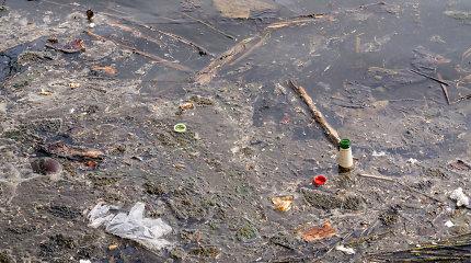 Tarša Lietuvos upėse: kas antra prastos ekologinės būklės