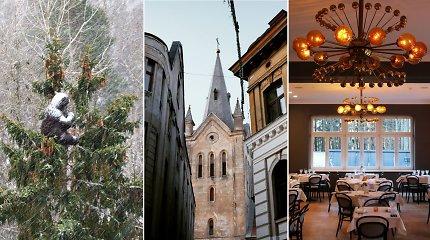 Idėja savaitgaliui: gerokai už Rygą aukščiau esanti Latvijos kultūros sostinė