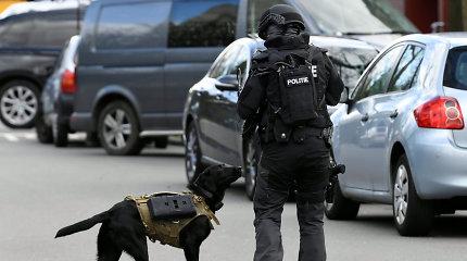 Nyderlanduose sulaikyti aštuoni vyrai, įtariami išžaginę mažiausiai tris paaugles
