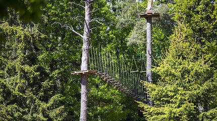 Penki kilometrai medžiuose: trasas parke Tauragėje įveikia ne visi