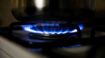 Per gaisrą žuvo Gižų kaimo gyventoja: įtariamas dujinės viryklės gedimas