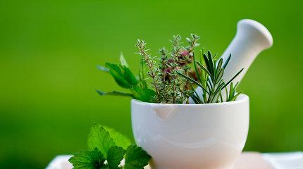 Vaistažolių arbatos – primirštas, bet efektyvus būdas kovoti su liga
