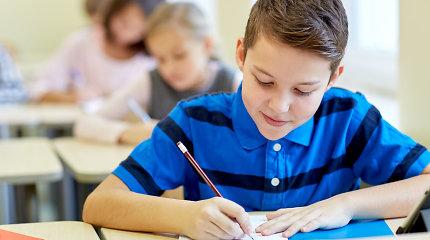 Ugdymas – ne vien faktai ir datos: kokios kompetencijos reikalingos šiuolaikiniam mokiniui?