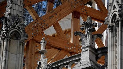 Paryžiaus Dievo Motinos katedroje atnaujinti konstrukcijų tvirtinimo darbai