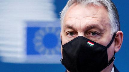 """Vengrijos opozicija kritikuoja valstybės turto """"parceliavimo"""" įstatymus"""