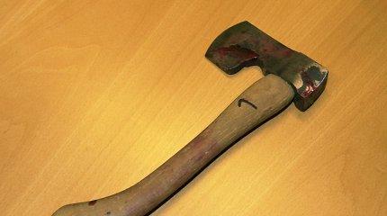 Vilniaus rajone sugyventinę nužudyti grasinęs vyras su kirviu puolė pareigūnus
